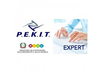 P.E.K.I.T. EXPERT